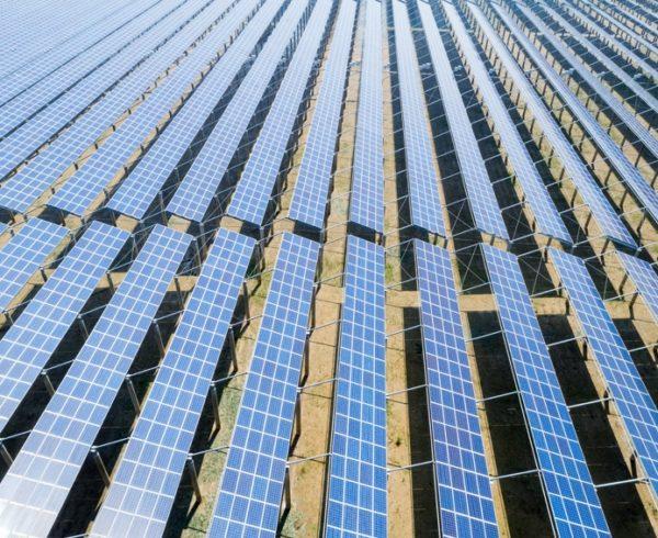 Para cumplir el objetivo que marca el PNIEC en renovables habría que instalar la capacidad equivalente la superficie de Madrid 4