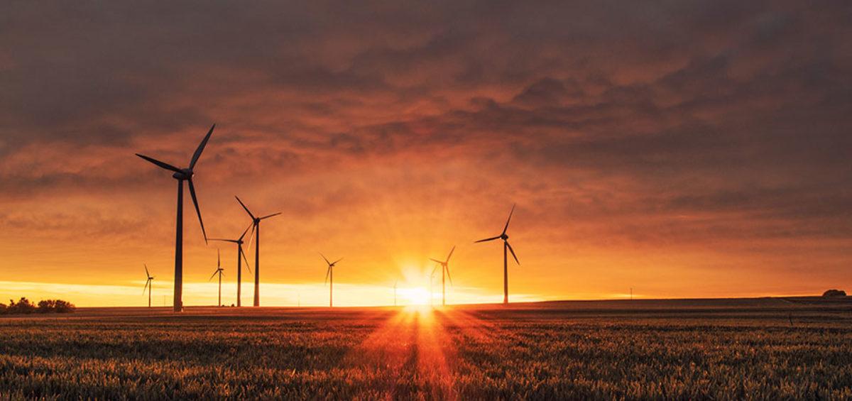 Para cumplir el objetivo que marca el PNIEC en renovables habría que instalar la capacidad equivalente la superficie de Madrid 8