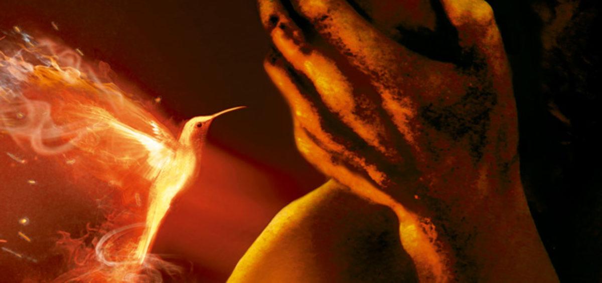 Les invitamos a la presentación del libro número 100 del escritor Alberto Vázquez-Figueroa: Año de Fuegos 2