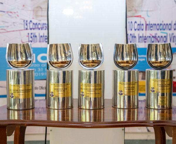El Concurso Internacional de vinos y espirituosos CINVE, aplazado por la pandemia 6